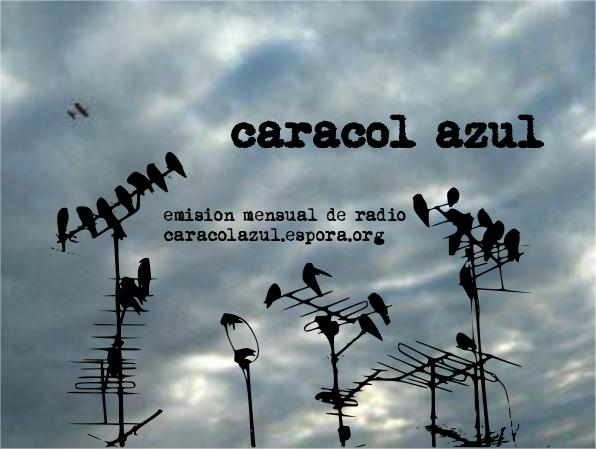 CaracolAzulMarzoImagenWEb